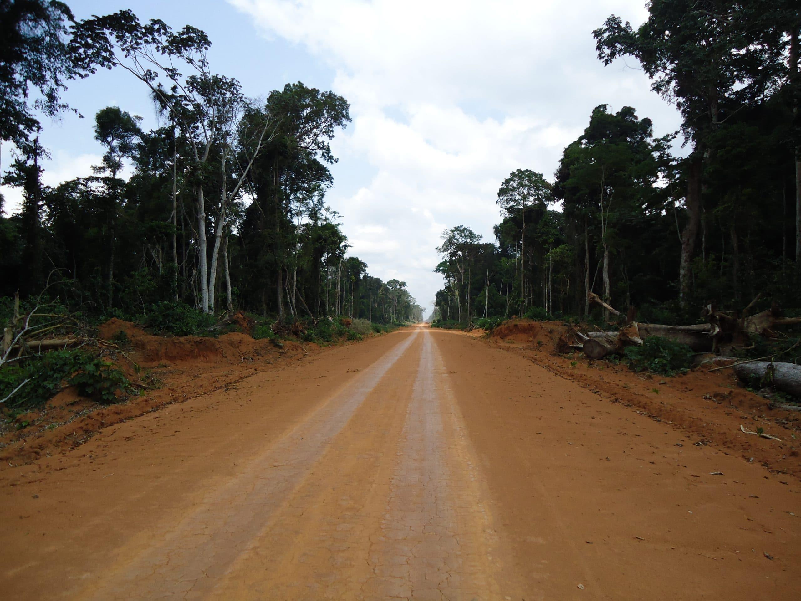 GTAP_Logging_Road_NCongo